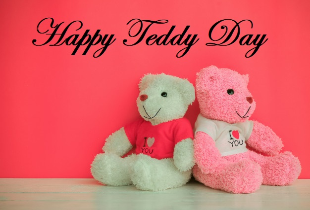 Happy teddy day i love you