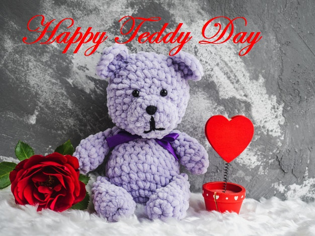 Happy teddy day red rose