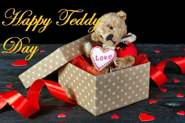 Happy teddy day gift